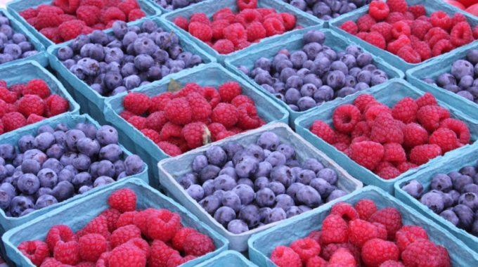Berries 1220605